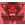Информация за клуба Red Devils