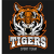 Vinica Tigers
